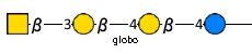 JCGG-MOTIF3004