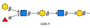 JCGG-MOTIF4032