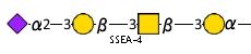 JCGG-MOTIF4034