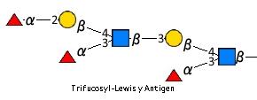JCGG-MOTIF4076