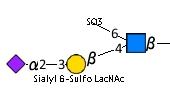 JCGG-MOTIF4094