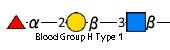 JCGG-MOTIF4101