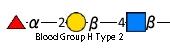 JCGG-MOTIF4102