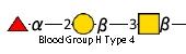 JCGG-MOTIF4104