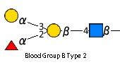 JCGG-MOTIF4110